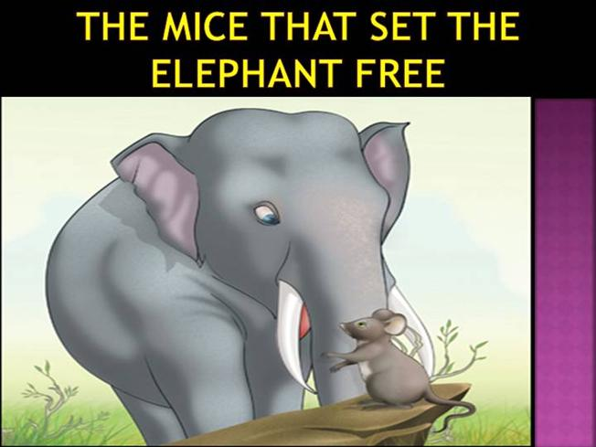 the mice that set elephants free