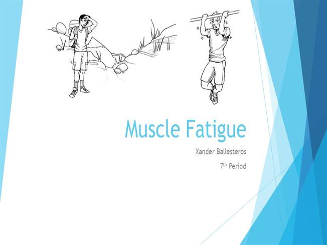Muscle Fatigue |authorSTREAM