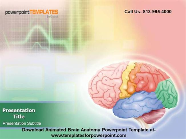 28 Brain Powerpoint Templates Free Download Free