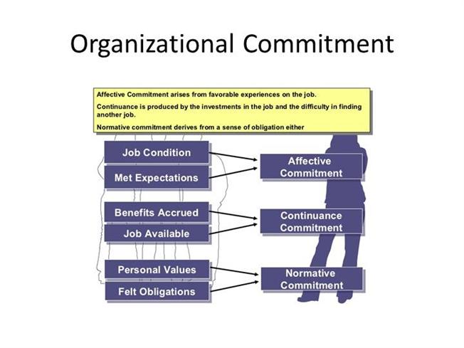 The Three Types of Organizational Commitment of Employees