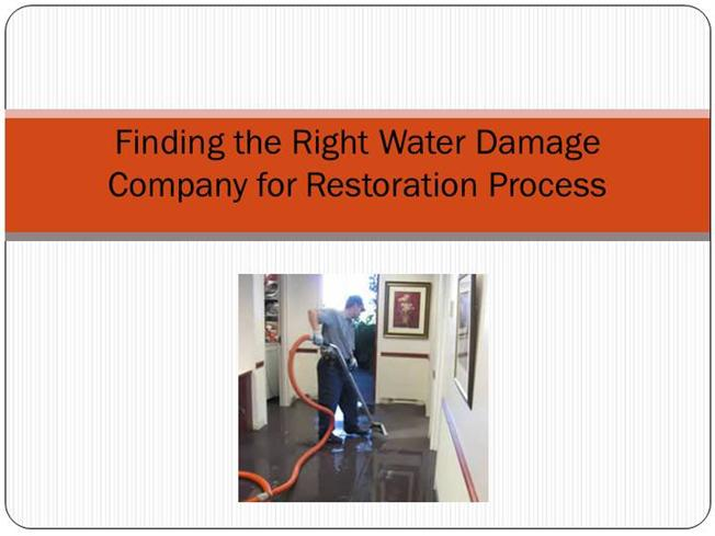 water restoration company business plan pdf