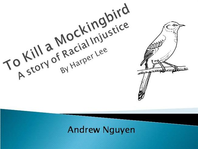 A review on racial injustice in to kill a mockingbird