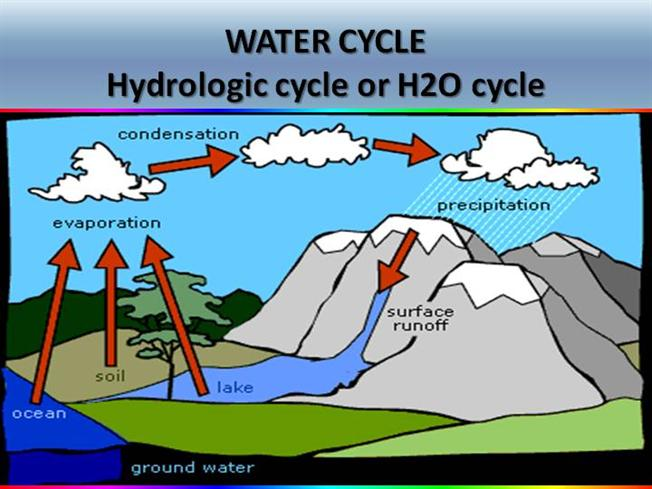 Water Cycle Powerpoint 75